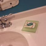 Cabana Bay Beach Resort Standard Room Zest Soap